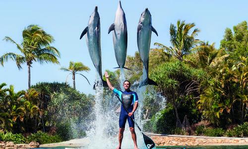 Sea World Announces Biggest Summer Ever