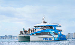 Sea World Cruises debuts the Gold Coast's newest  Whale Watching vessel for the 2019 Season