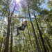 TreeTop Central Coast wins NSW Tourism Awards